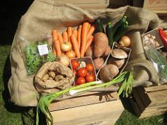 Bio zöldséglé